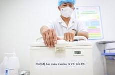 JICA suministra a Vietnam cajas enfriadoras para preservar vacunas