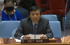 Vietnam expresa preocupación ante tensión política en Chipre