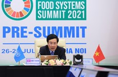 Vietnam espera convertirse en centro de innovación alimentaria de Asia