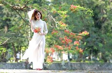 Celebran concurso fotográfico en honor a la belleza de las mujeres vietnamitas