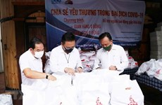 Vicecanciller vietnamita agradece apoyo de coterráneos en extranjero a lucha antiepidémica