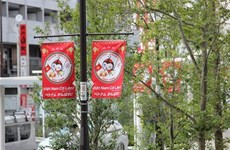 Ciudad japonesa promueve imagenes de Vietnam en vísperas de Juegos Paralímpicos