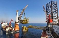 Empresa vietnamita gana contrato para construir plataforma petrolera en Qatar