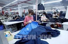 EVFTA, catalizador para desarrollo de empresas vietnamitas