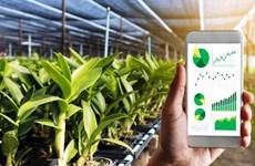 Provincia vietnamita de Vinh Phuc promueve transformación digital en la agricultura
