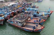 Ejercicio militar de China en Hoang Sa viola soberanía de Vietnam, dice portavoz