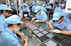 Máxima protección de derechos de trabajadores y empleadores vietnamitas en medio del COVID-19