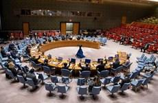 Condena Vietnam el uso de armas químicas