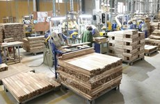 Exportaciones de madera de Vietnam alcanzan fuerte aumento