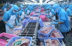 Oportunidades para exportación de pangasius vietnamita a Brasil