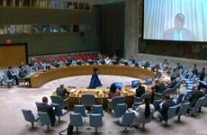 Vietnam expresa preocupaciones sobre violencia contra civiles en Somalia