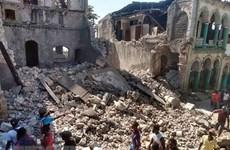 No se han reportado vietnamitas entre víctimas por terremoto en Haití