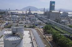 """Mantienen """"áreas verdes"""" en fábricas y empresas vietnamitas en contexto del COVID-19"""