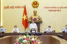 Revisa Comité Permanente del Parlamento de Vietnam importantes trabajos legislativos