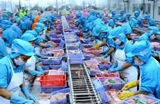 Vietnam por convertirse en centro mundial de procesamiento de mariscos