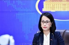 Aclara Cancillería de Vietnam asuntos de gran atención del público
