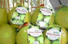 Pomelo vietnamita Phuc Trach para la venta en línea