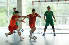 Copa Mundial de Fútbol Sala: Vietnam viaja a España por su último entrenamiento