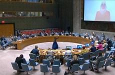 Vietnam insta a una mayor asistencia humanitaria al pueblo sirio