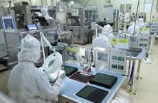 Empresas vietnamitas buscan mejorar exportaciones a España