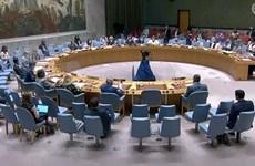 Vietnam exhorta al apoyo internacional para ayudar a Etiopía a superar la crisis