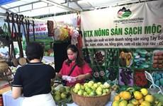Hanoi produce y consume productos agrícolas seguros en el contexto del COVID-19