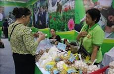 Hanoi por acercar especialidades locales a consumidores