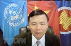 Delegación vietnamita ante la ONU celebra el Día Nacional