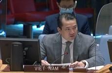 Vietnam condena el uso de armas químicas ante la ONU