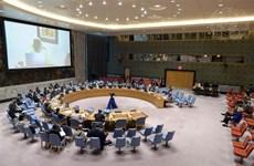 Vietnam subraya papel de transición de operaciones de mantenimiento de paz