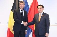 Vietnam busca vigorizar la cooperación con Bélgica