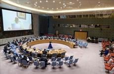 Vietnam destaca importancia de celebración de elecciones dentro del plazo fijado en Libia