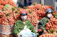 Vietnam y China buscan facilitar el comercio bilateral