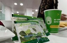Comercializan en Vietnam producto argentino de yerba mate