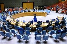 Vietnam destaca necesidad de luchar contra el comercio ilegal de armas