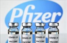 Aprueba Vietnam presupuesto para comprar 20 millones de dosis de vacuna Pfizer