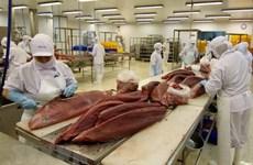 Vietnam, mayor proveedor de atún a Israel
