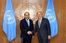 Impronta de Vietnam como miembro responsable de la ONU