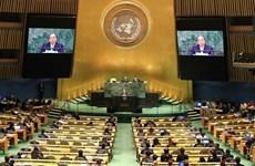 Vietnam concede importancia a los nexos con la ONU