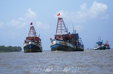 Provincia vietnamita de Kien Giang por eliminar pesca ilegal