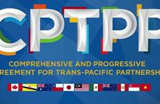 Vietnam dispuesto a compartir experiencias en adhesión al CPTPP