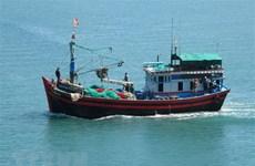 Provincia vietnamita trabaja para solventar tarjeta amarilla de Comisión Europea al sector pesquero