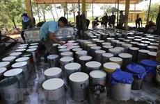 Vietnam en undécimo lugar en lista de proveedores de caucho de Estados Unidos