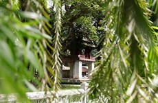 Buscan soluciones para despertar el potencial cultural de Van Mieu-Quoc Tu Giam
