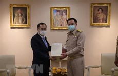 Vietnam y Tailandia fortalecen cooperación en salud