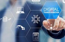 Comparten experiencias en transformación económica digital en respuesta al COVID-19 en Vietnam