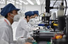 Garantizan carácter oportuno de apoyo a trabajadores y empleadores de Vietnam