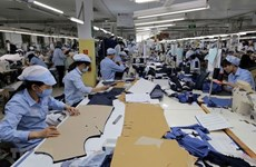 Empresas alemanas se benefician del acuerdo de libre comercio Vietnam- UE