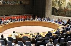 Aseveran políticas de Vietnam de no proliferación de armas nucleares