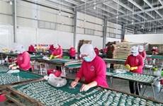 Provincia vietnamita de Phu Tho busca soluciones para recuperación de mercado laboral